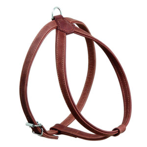 Buffalo Harness Brown