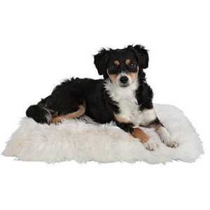 Sheepskin Cushion for Dogs