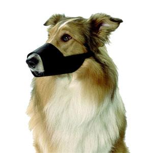 Nylon Muzzle Black