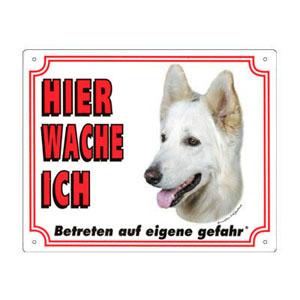 GRATIS Hunde Warnschild, Berger Blanc Suisse