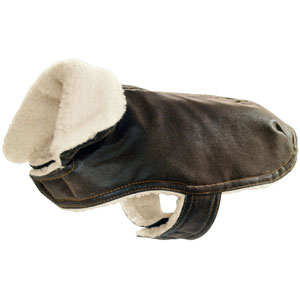 Dog Coat Brownie