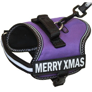 DoxLock CANINE 2.0 Harness Purple XXS