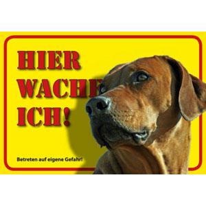 German Dog Warning Label Hier wache ich! - Rhodesian Ridgeback