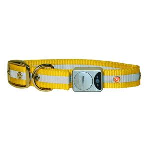 Flash & Reflex Halsband
