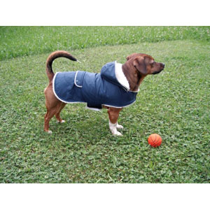 Dog Coat Teddy