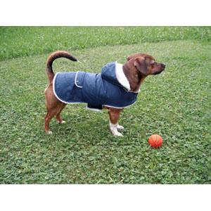 Dog Coat Teddy