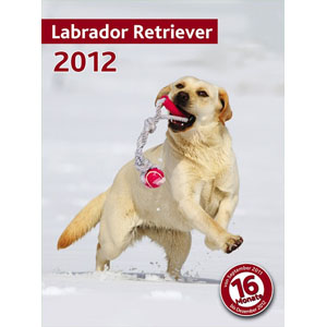Trixie Dog Calendar 2012 Labrador Retriever