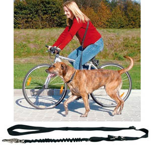Bicycle And Jogging Lead