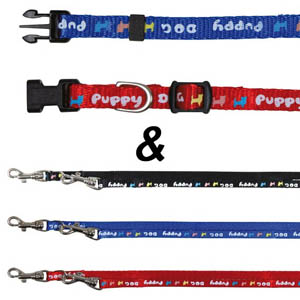 Puppy Collar With Lead