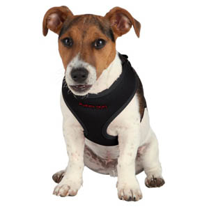 Puppy Soft Harness With Lead - Black
