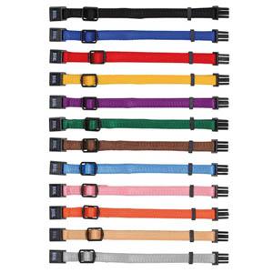Set Of Puppy Collars 17-25cm