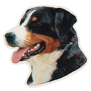 Appenzeller Sennenhund Hundeaufkleber