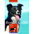 Border Collie, CADMOS