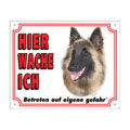 FREE Dog Warning Sign, Belgian Tervuren