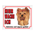 FREE Dog Warning Sign, Yorkshire Terrier