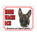 FREE Dog Warning Sign, Belgian Shepherd Dog