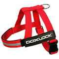 DoxLock Beltharness Red SMALL