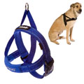 Ezydog - Quick Fit Dog Harness Blue