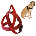 Ezydog - Quick Fit Dog Harness Red