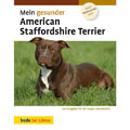 American Staffordshire Terrier,