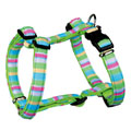 Impression H-Harness Lime Green (50-75 cm)