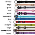 Premium Nylon Collar (22-35 cm x 10 mm)