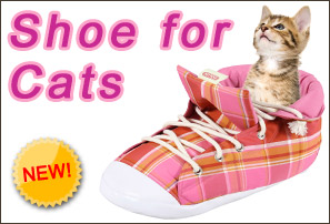 big shoe for cats