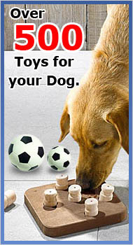 Over 500 Toys for your Dog