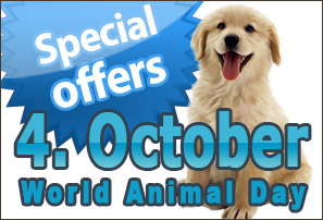 World Animal Day Offers