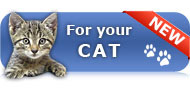NEW: Now everything for your cat!
